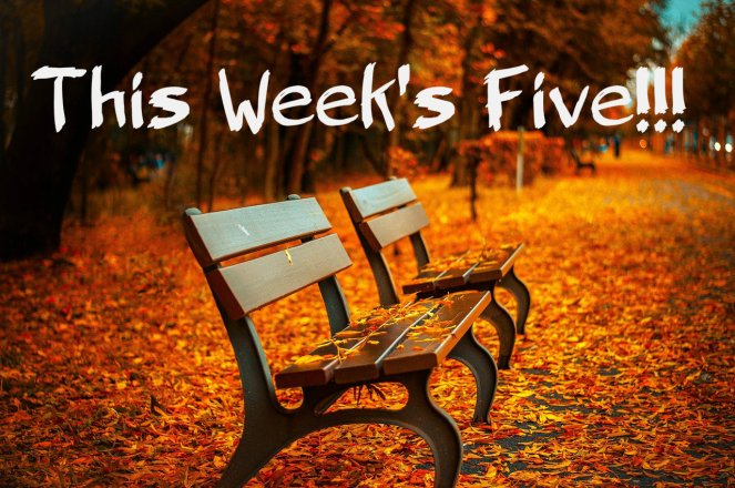 Fall This Weeks Five