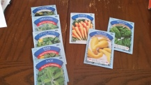 Dollar Tree Seeds