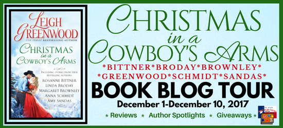 BNR Christmas in a Cowboy's Arms PNG