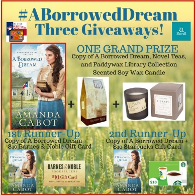 Giveaway A Borrowed Dream